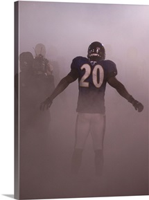 Baltimore Ravens Ed Reed