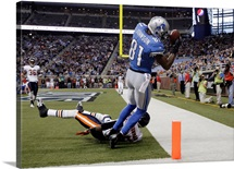 Calvin Johnson TD Reception