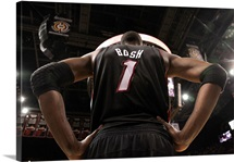 Chris Bosh