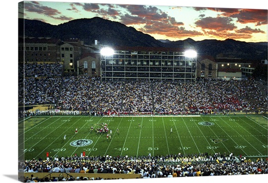 Colorado Photographs Buffs Under the Lights