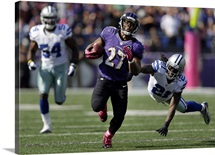 Cowboys Ravens Football - Ray Rice
