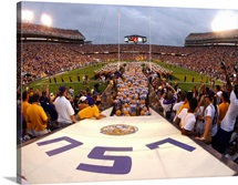 LSU Tigers Take the Field on Game Day