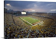 Minnesota Football at TCF Bank Stadium