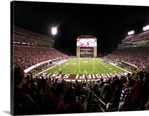 Mississippi State: Davis Wade Stadium