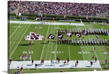 Mississippi State Photographs DAWGS Flags on Game Day
