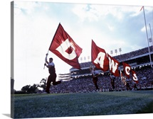 Mississippi State Pictures DAWGS Flags