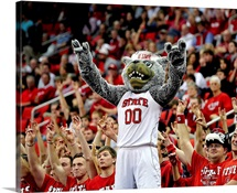 Mr. Wuf, mascot of the North Carolina State Wolfpack, leads the cheers