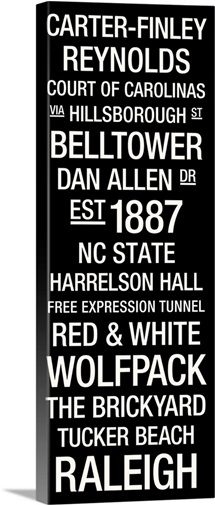 NC State: College Town Wall Art