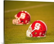 NC State Helmets at Carter-Finley Stadium