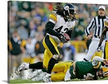 Pittsburgh Steelers Troy Polamalu