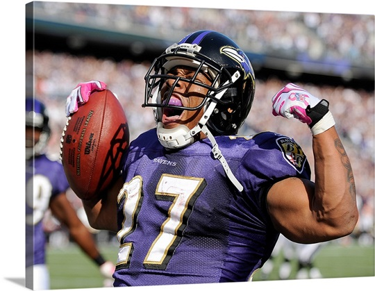 Ravens Running Back Ray Rice