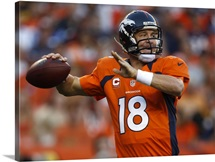 Steelers Broncos Manning Football