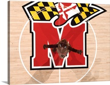 Testudo at Center Court in the Comcast Center