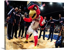 The Atlanta Hawks Mascot