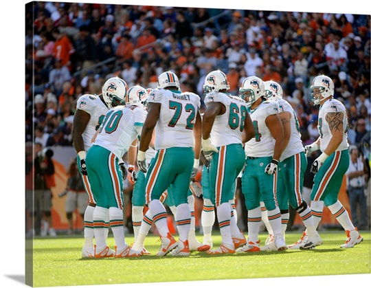 The Miami Dolphins Huddle