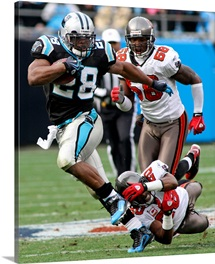 The Panthers Jonathan Stewart