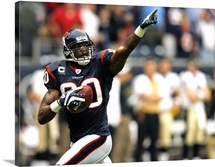 The Texans Andre Johnson