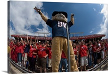 UA Pictures Wide View of Wilbur at the Football Game