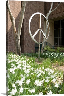 University of Pennsylvania Photographs The Peace Sign