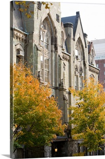 University of Pennsylvania Pictures College Hall Among the Trees