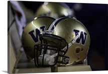 UW Photographs Helmet Sits at Husky Stadium