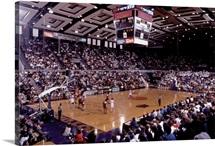 UW Photographs Husky Basketball