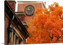 Vanderbilt Pictures Kirkland Clock