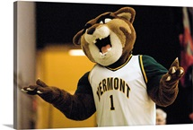 Vermont Pictures The Catamount