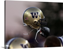 Washington Huskies Football Helmet
