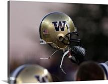 Washington Huskies Football Helmet