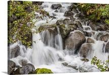 Small waterfall near Mendenhall Glacier, Southeast Alaska, USA