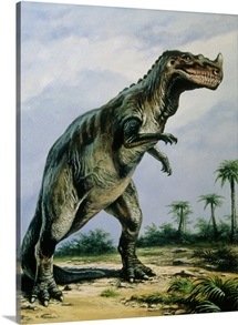 Artist&amp;#39;s impression of Ceratosaurus nasicornis