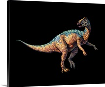 Artwork of a Tenontosaurus dinosaur