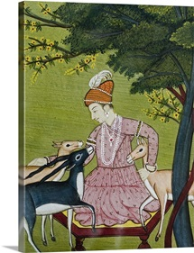 Indian miniature, animal kindness ahimsa