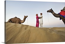 Bride and groom with camels in sand dunes, Rajistan, India