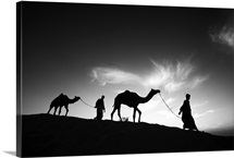 Camels and their owners at sunset, Rajistan, India