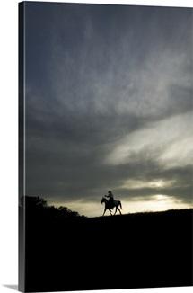 Cowboy riding his horse at sunset, Yosemite, California