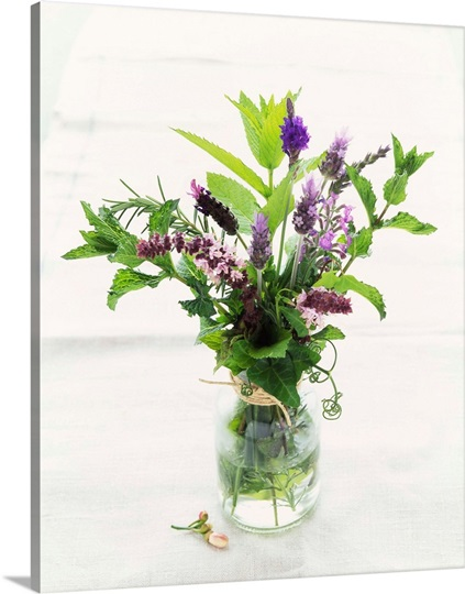 Fresh Herb Bouquet in a Vase Photo Canvas Print  Great