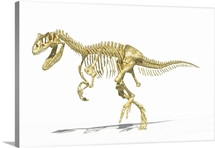 3D rendering of an Allosaurus dinosaur skeleton, side view