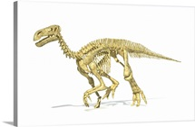 3D rendering of an Iguanodon dinosaur skeleton, perspective view