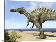 A carnivorous Suchomimus wanders a beach on the ancient Tethys Ocean
