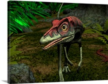 A Compsognathus wanders a late Jurassic forest