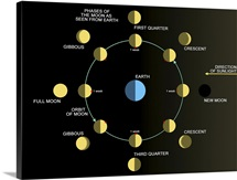 A diagram showing the phases of the Earths moon