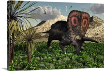 A lone Torosaurus dinosaur feeding on plants