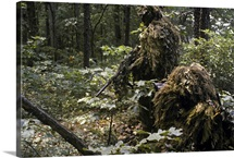 A Marine sniper team wearing camouflage ghillie suits