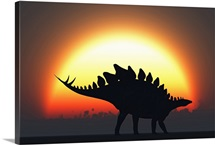 A Stegosaurus silhouetted against the setting Sun at the end of a prehistoric day
