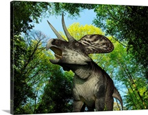 A Zuniceratops wanders a Cretaceous forest