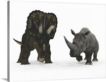 An adult Nedoceratops compared to a modern adult White Rhinoceros