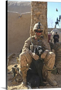 An IED detection dog keeps his dog handler company