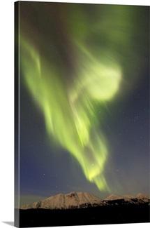 Aurora borealis over Emerald Lake, Carcross, Yukon, Canada